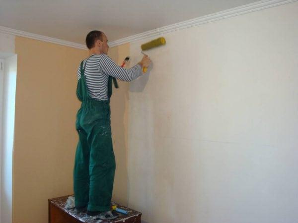 Мужчина грунтует стены после шпаклевания
