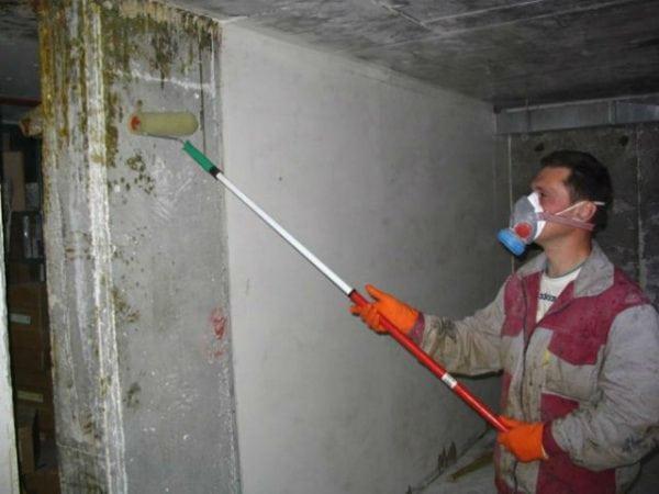 Нанесение на стены погреба антигрибкового вещества