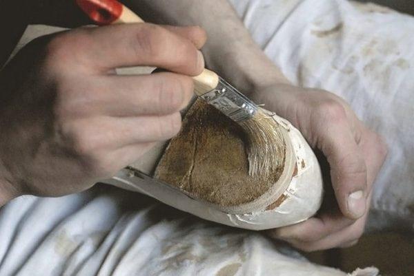 Ремонт обуви с помощью Десмокола