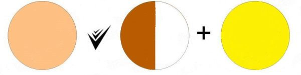 Получение бежевого тона путем смешения коричневой, белой и желтой краски