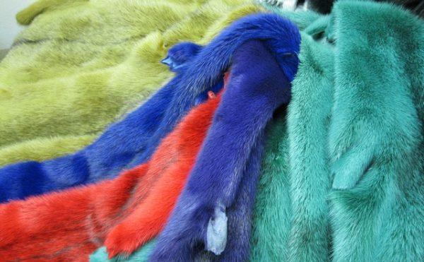 Выбор цвета для меха