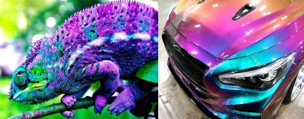 Автомобиль покрашенный в цвета хамелеона