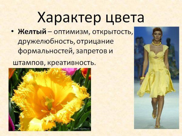 Желтый - символ оптимизма и открытости