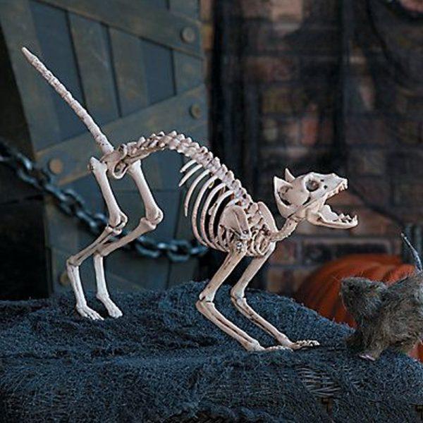 Скелет кошки в оформлении интерьера