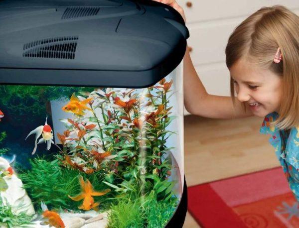 Аквариум в интерьере детской
