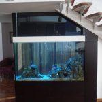 Дизайн встроенного аквариума в интерьере