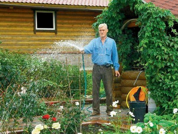 Цветник во дворе дома
