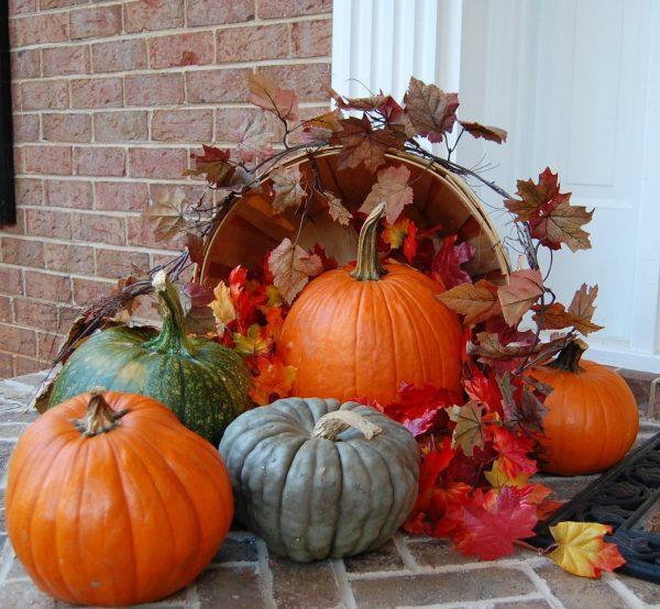 Осенние композиции из тыкв для дачи