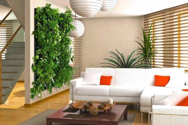 Растения на стене в гостиной