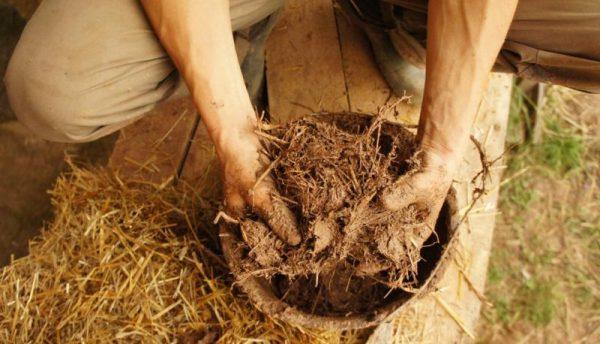 Раствор из глины и соломы