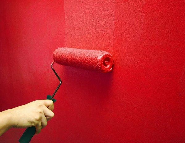 Процесс окрашивания стен бархатной краской