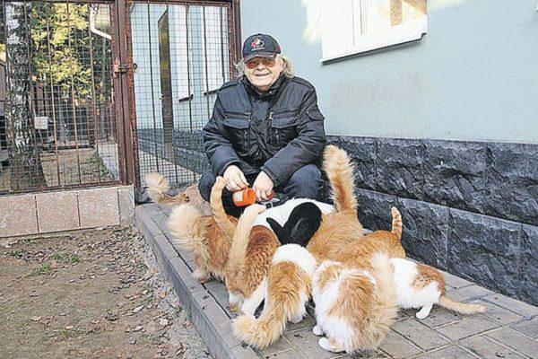 Кошки Юрия Антонова на даче