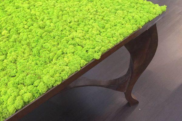 Журнальный столик с элементами мха