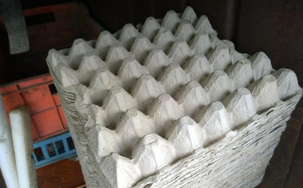 Ячейки для яиц бумажные