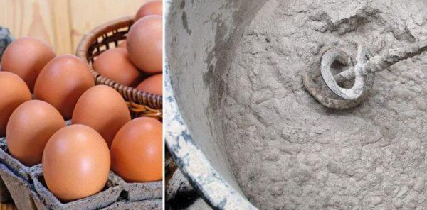 Куриные яйца в цементный раствор