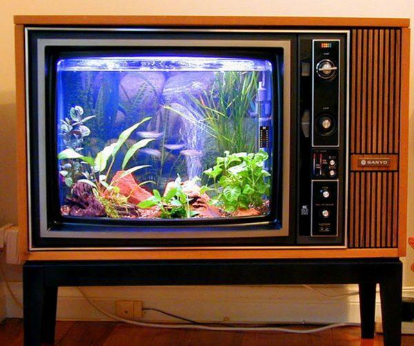 Оборудование аквариума в корпусе