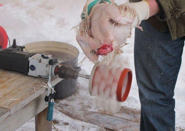 Насадка на дрель для ощипывания кур