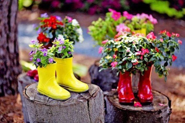 Цветы в резиновых сапогах