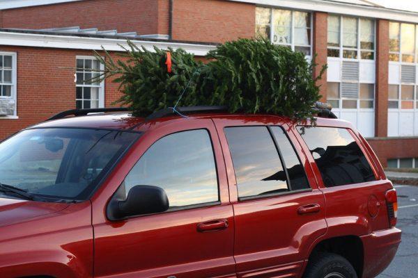 Новогодняя елка на крыше автомобиля