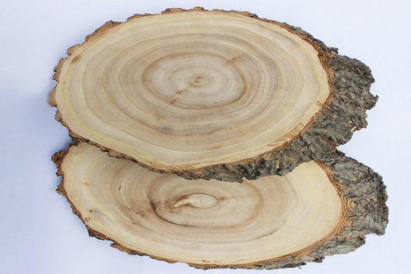 Большие косые спилы дерева