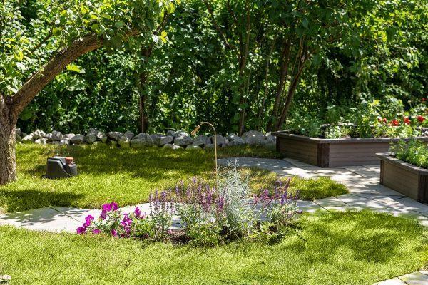 Сад Елены Прокловой