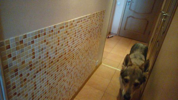 Стеновые панели для защиты от животных