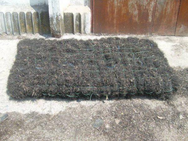 Камка - утеплитель из водорослей