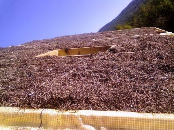 Утепление крыши камкой