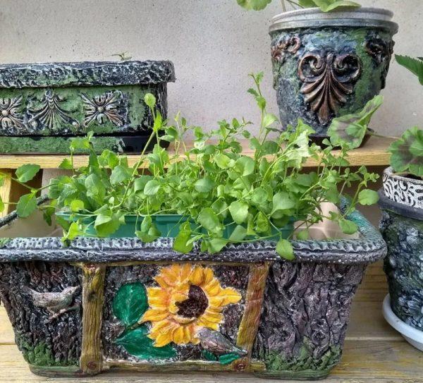 Декоративные ящики и горшки